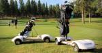 GolfBoard-Skateboard-For-Golfers-image-2-1